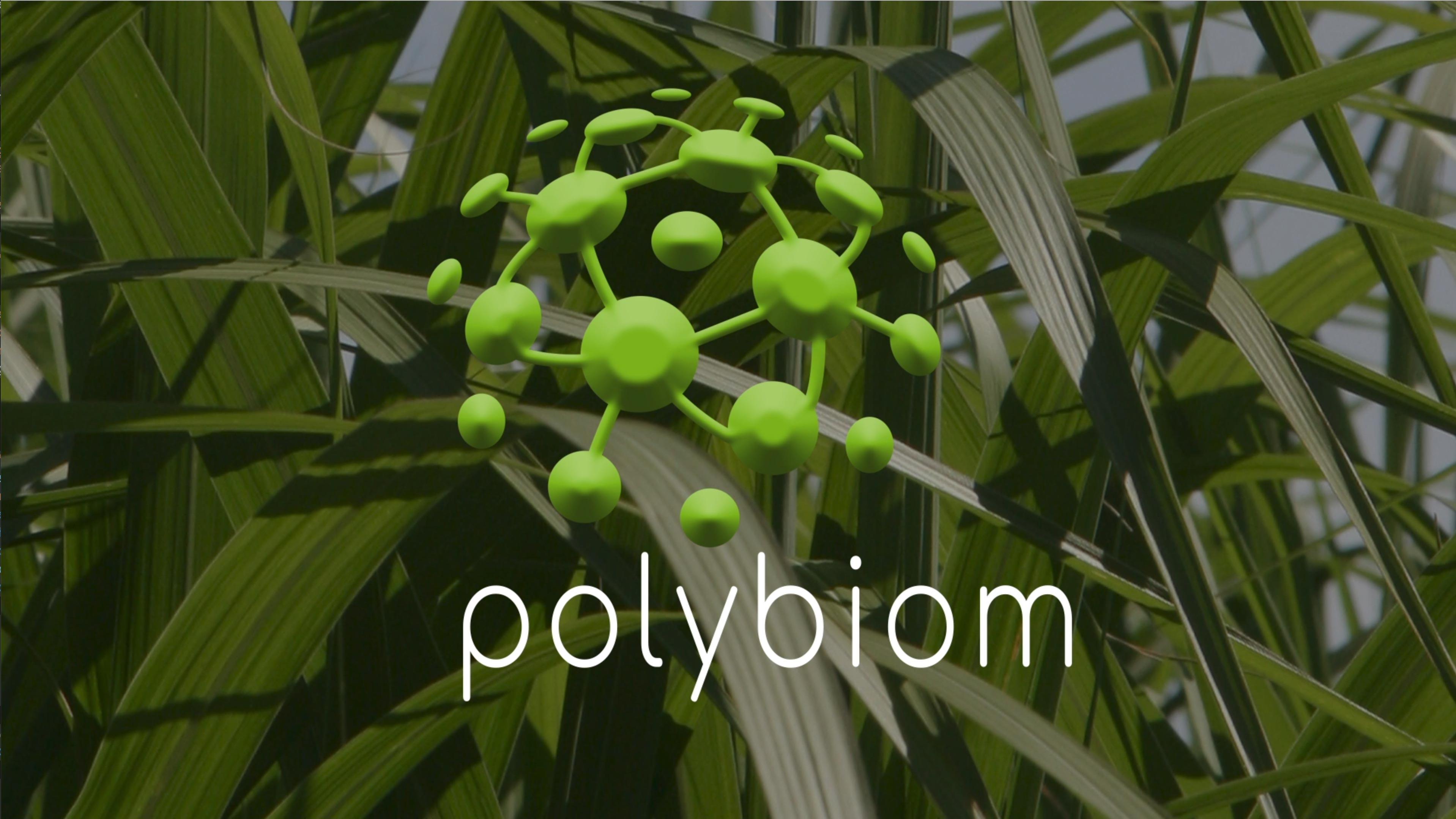 Vidéo polybiom